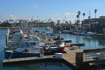 Ventura County Commercial Fishing Marina in Channel Islands Harbor